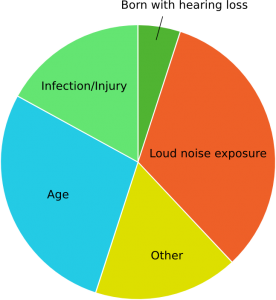 an analysis of the causes of hearing loss Conductive hearing loss involves problems with the outer and middle ear let's take a deeper look at what conductive hearing loss is in this blog post.